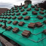 Roof Tile Repairs Laois