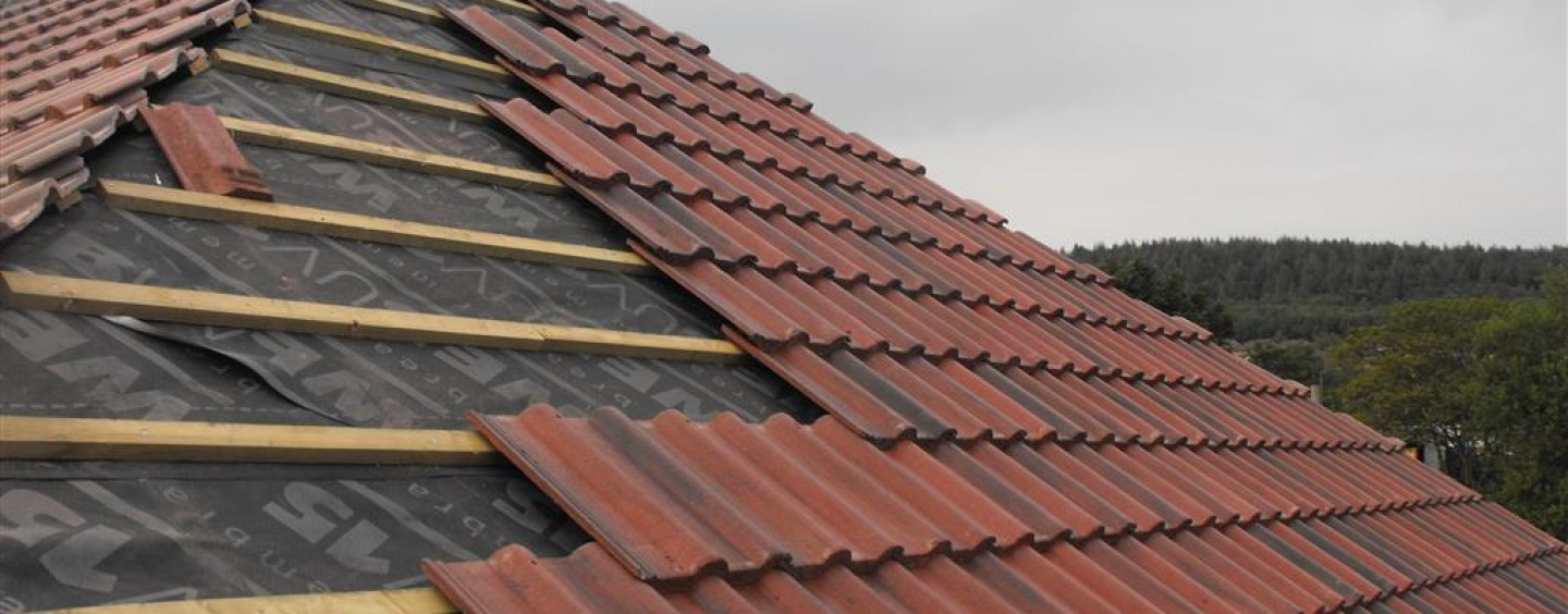Roof Repairs in Laois