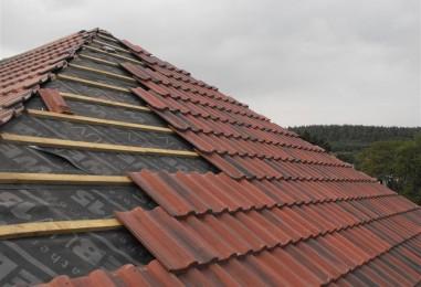 Roof Repairs in Laois