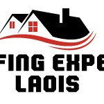 Roof Experts Laois